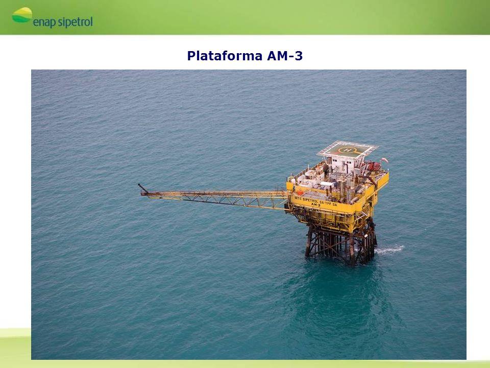 Plataforma AM-3