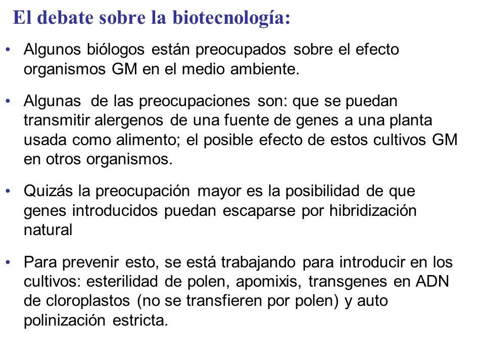 El debate sobre la biotecnología:
