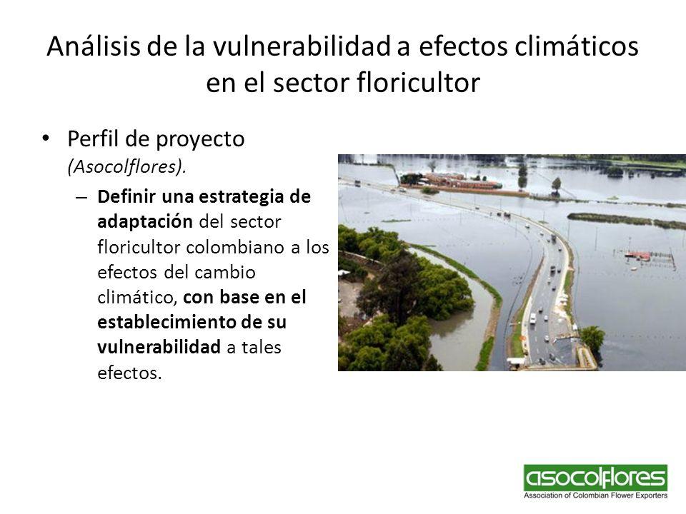 Análisis de la vulnerabilidad a efectos climáticos en el sector floricultor