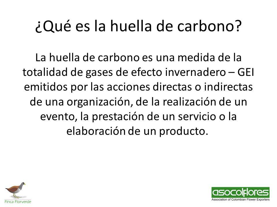 ¿Qué es la huella de carbono