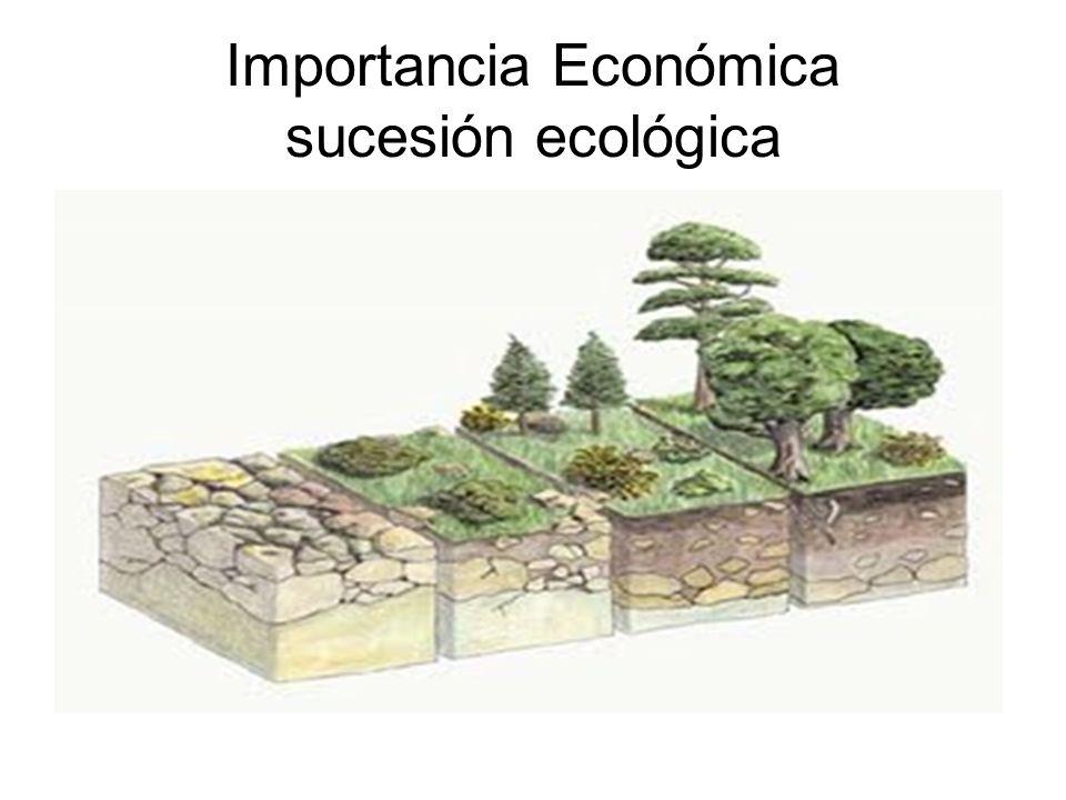 Importancia Económica sucesión ecológica