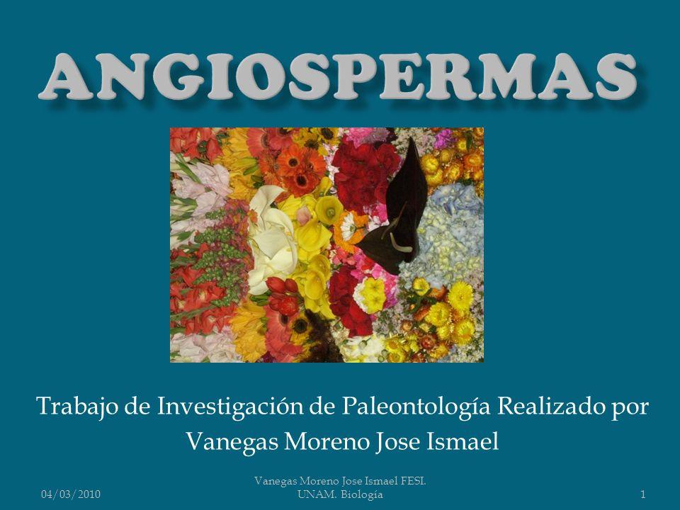 Angiospermas Trabajo de Investigación de Paleontología Realizado por