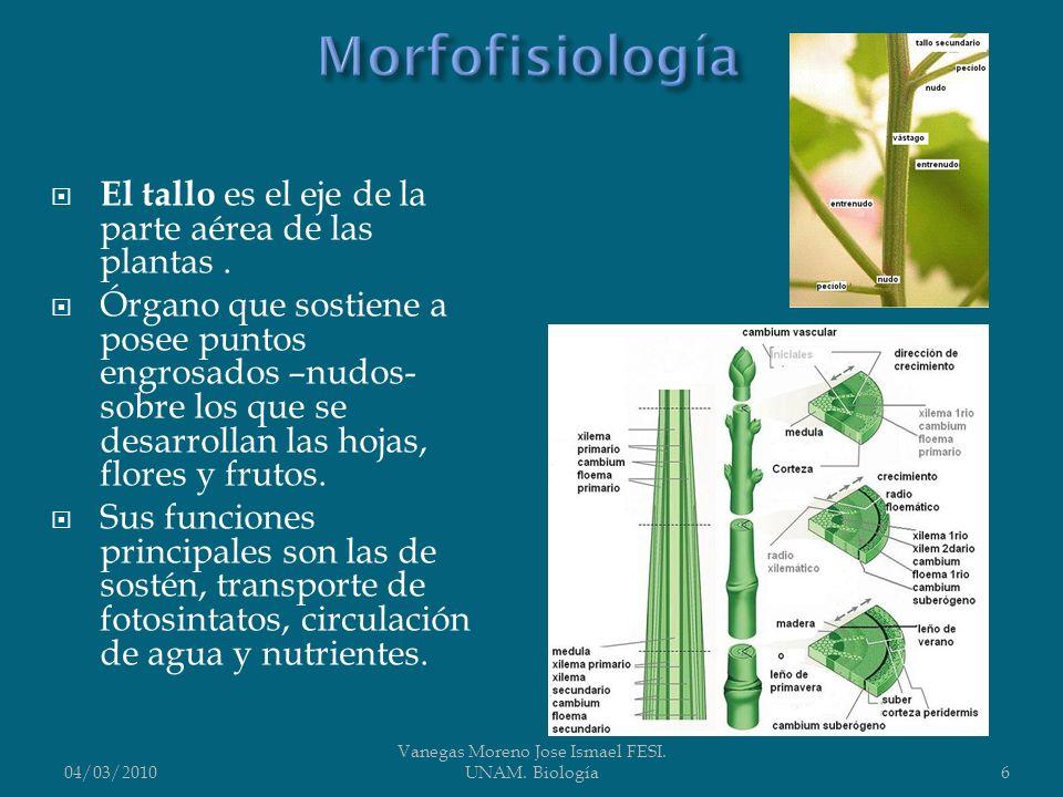 Vanegas Moreno Jose Ismael FESI. UNAM. Biología