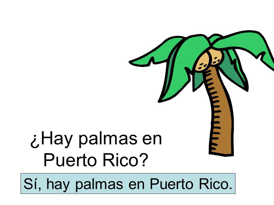 ¿Hay palmas en Puerto Rico
