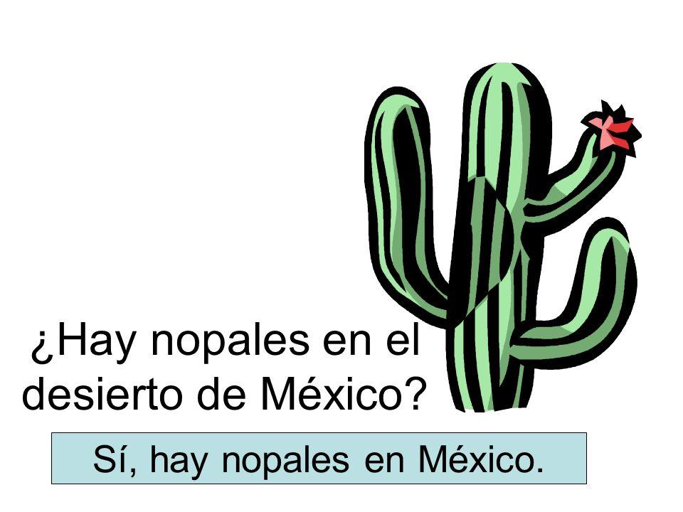¿Hay nopales en el desierto de México