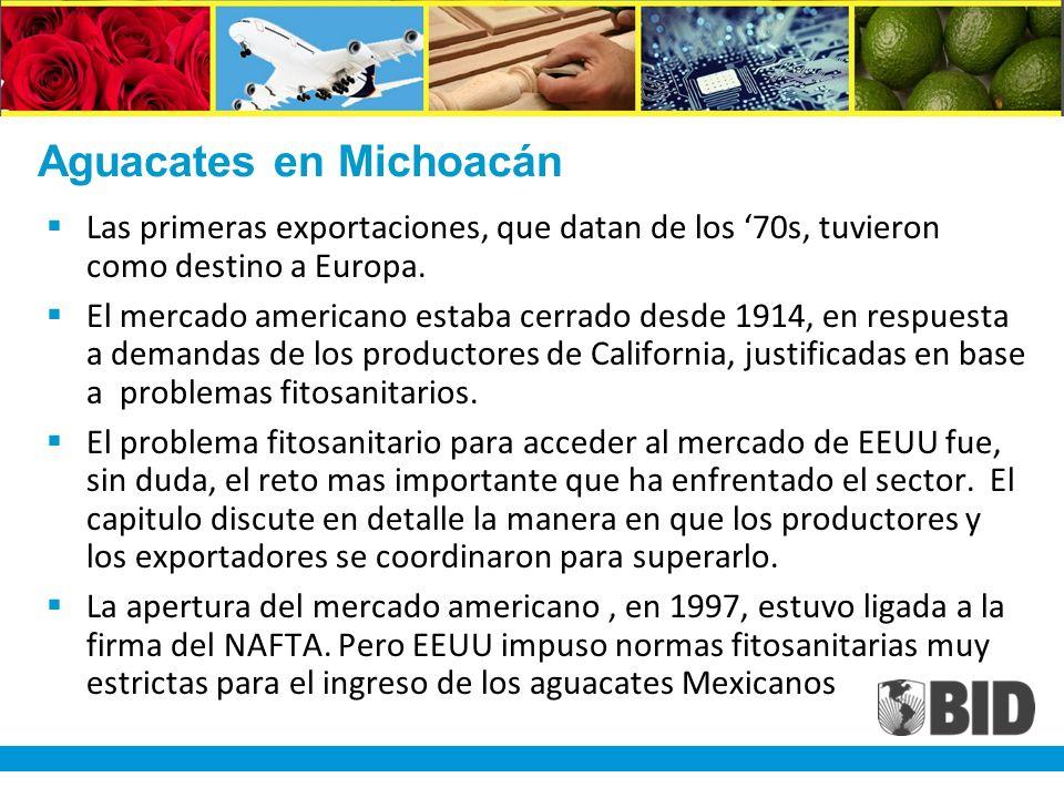 Aguacates en Michoacán