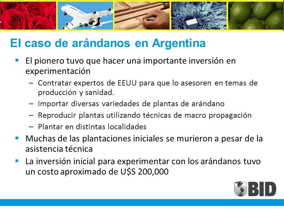El caso de arándanos en Argentina