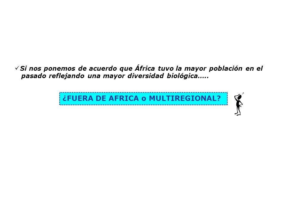 ¿FUERA DE AFRICA o MULTIREGIONAL
