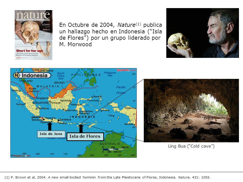 En Octubre de 2004, Nature(1) publica