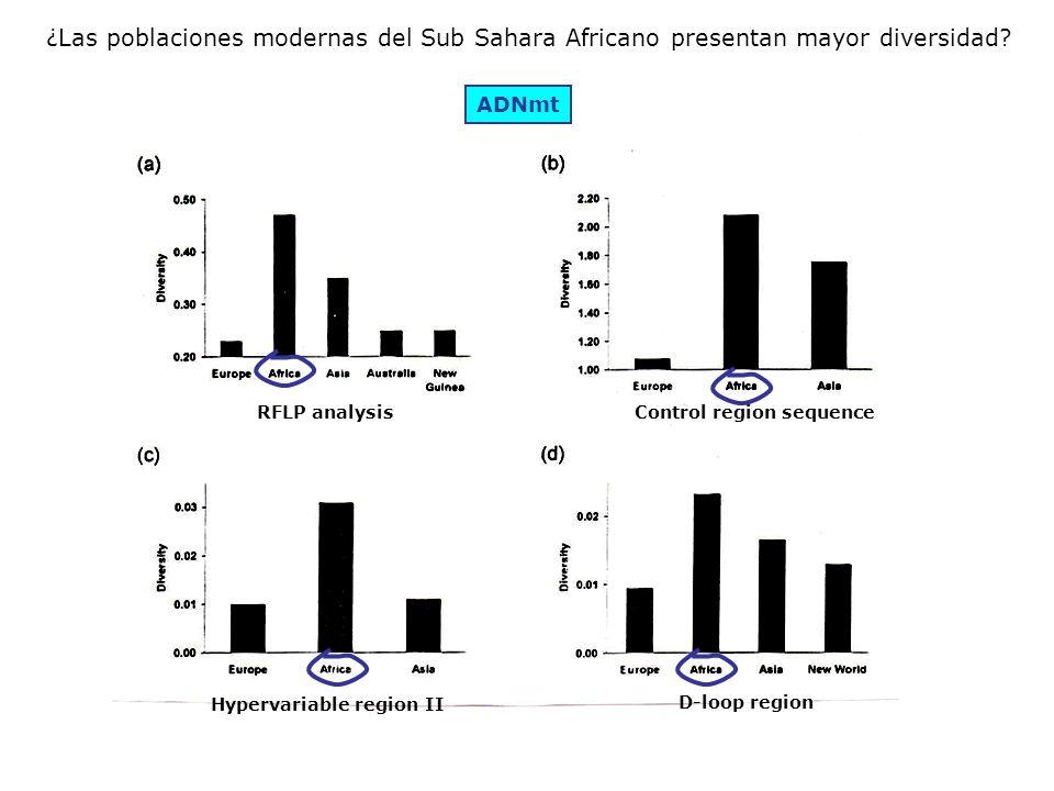 ¿Las poblaciones modernas del Sub Sahara Africano presentan mayor diversidad