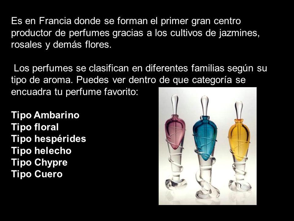 Es en Francia donde se forman el primer gran centro productor de perfumes gracias a los cultivos de jazmines, rosales y demás flores.