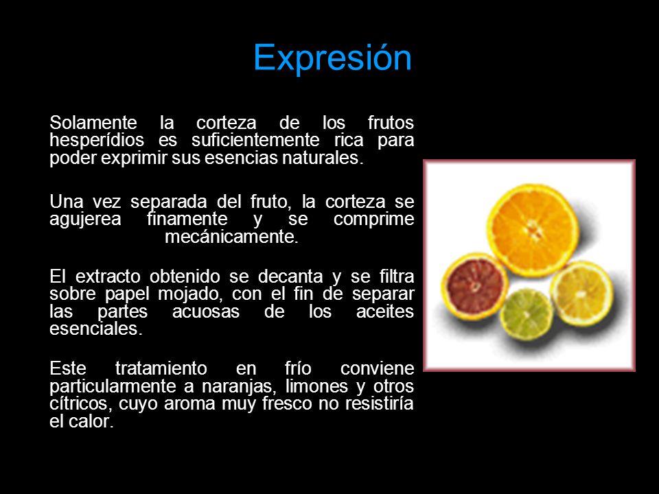 Expresión Solamente la corteza de los frutos hesperídios es suficientemente rica para poder exprimir sus esencias naturales.