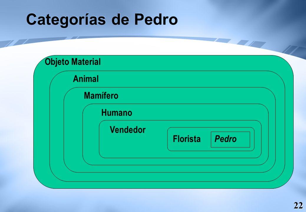 Categorías de Pedro Objeto Material Animal Mamífero Humano Vendedor