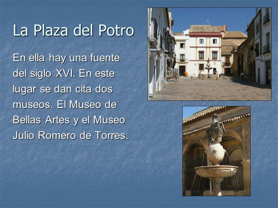 La Plaza del Potro En ella hay una fuente del siglo XVI. En este