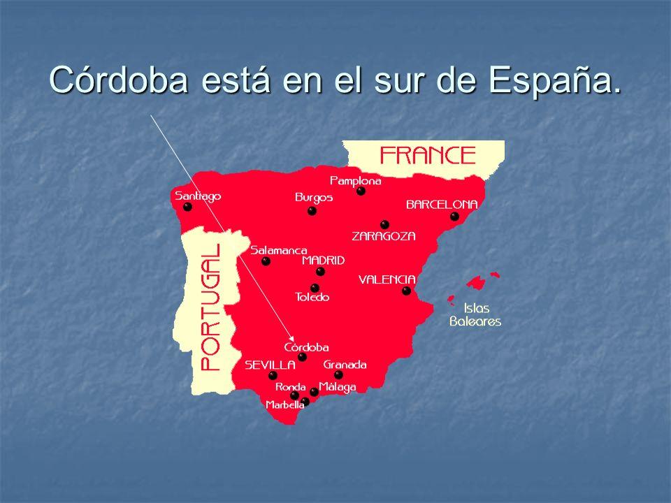 Córdoba está en el sur de España.