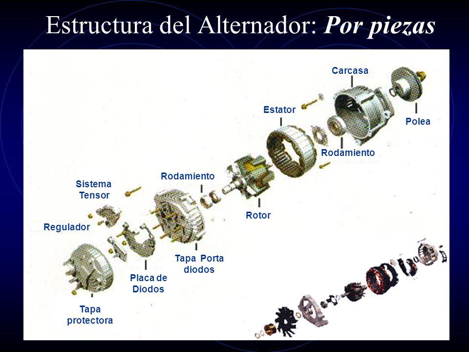 Estructura del Alternador: Por piezas
