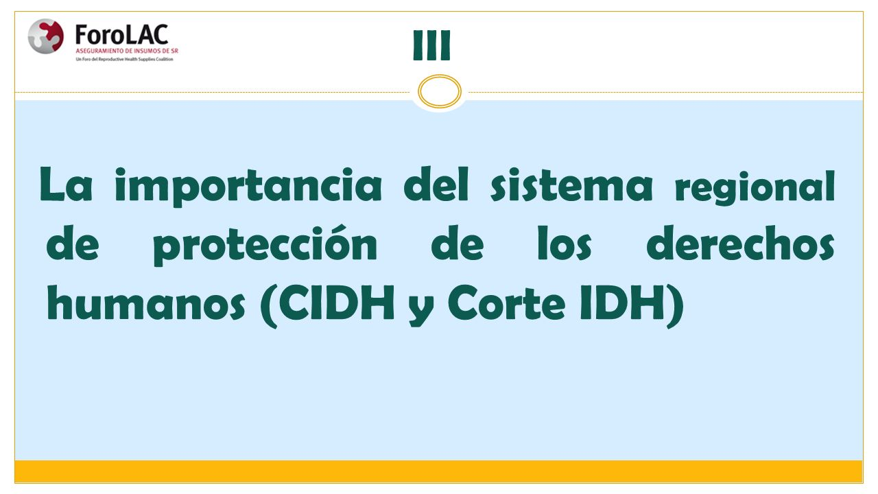III La importancia del sistema regional de protección de los derechos humanos (CIDH y Corte IDH)