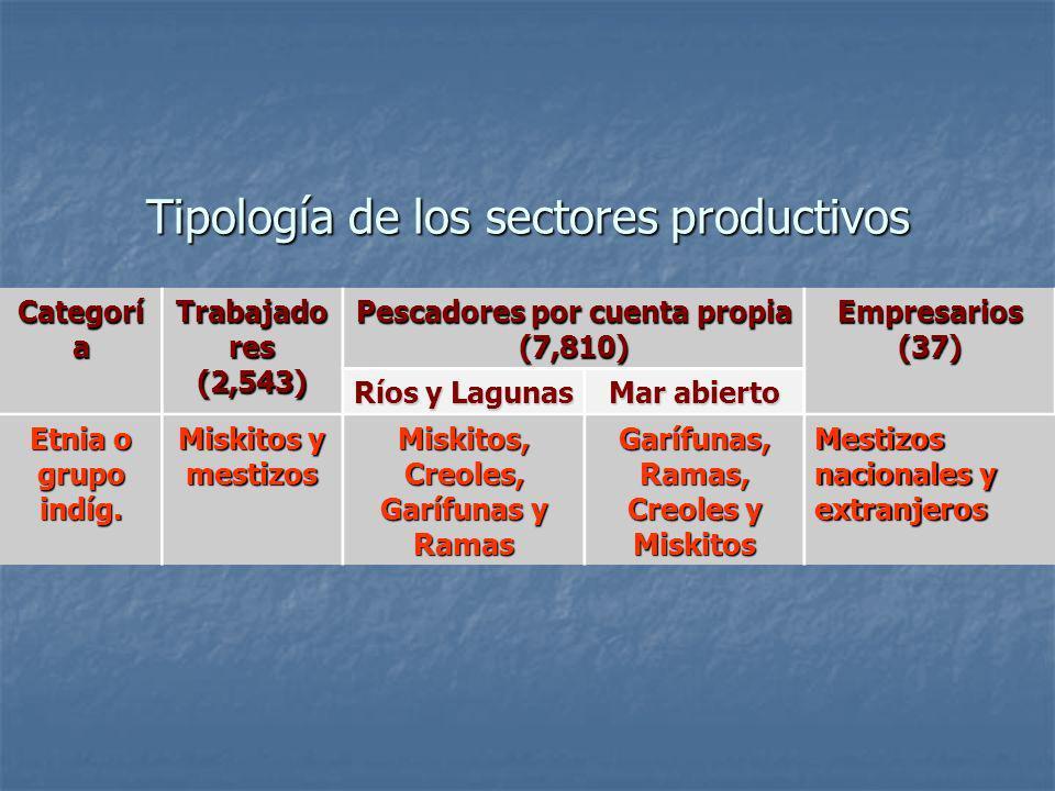 Tipología de los sectores productivos