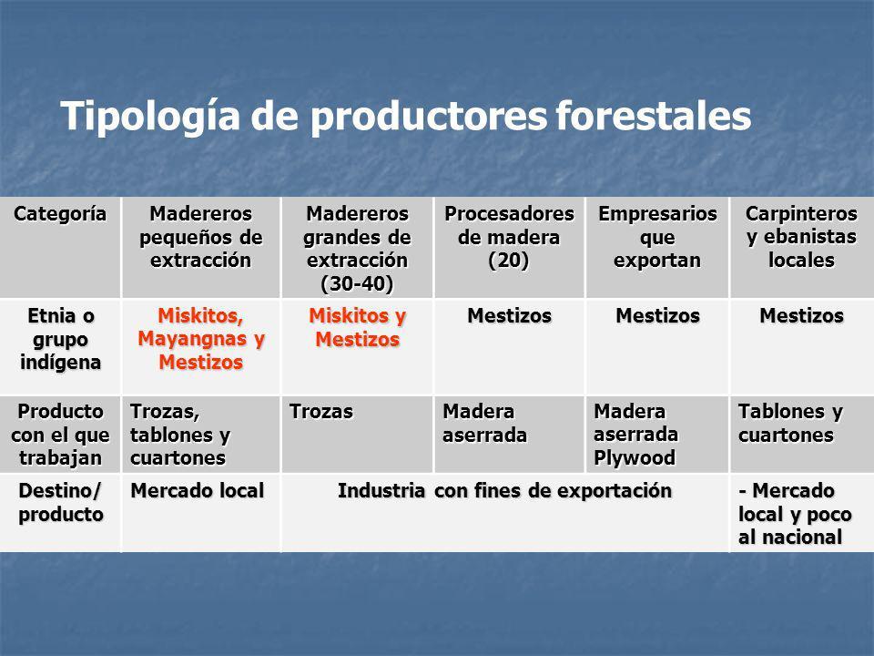 Tipología de productores forestales