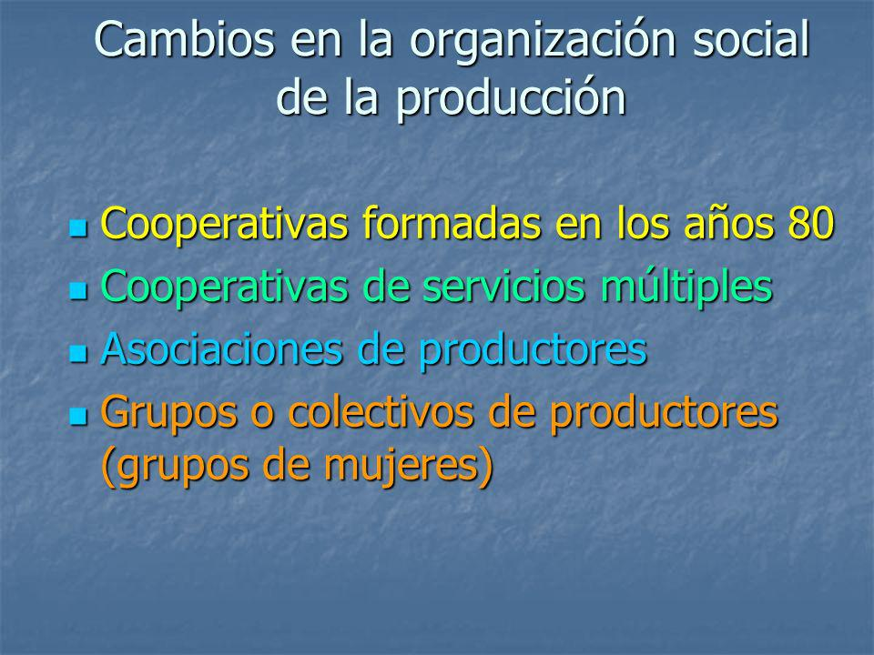 Cambios en la organización social de la producción