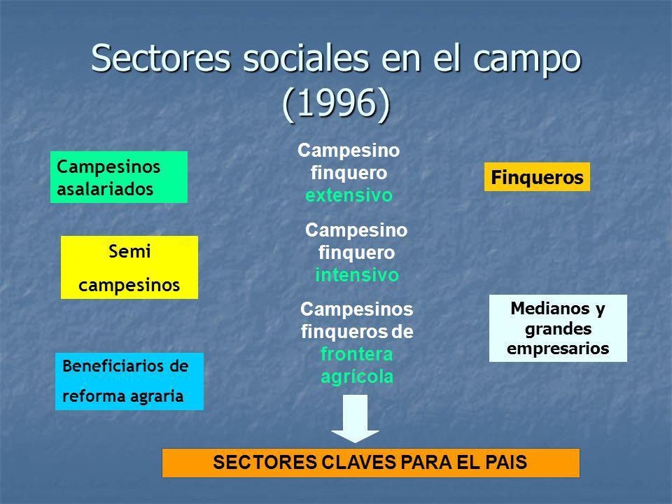 Sectores sociales en el campo (1996)