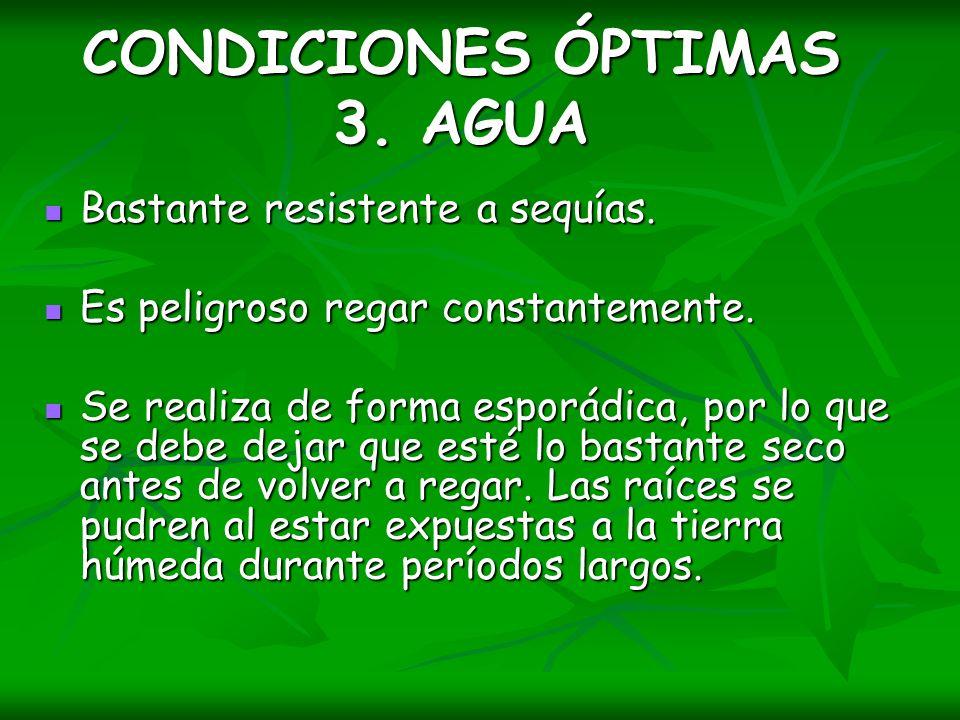 CONDICIONES ÓPTIMAS 3. AGUA