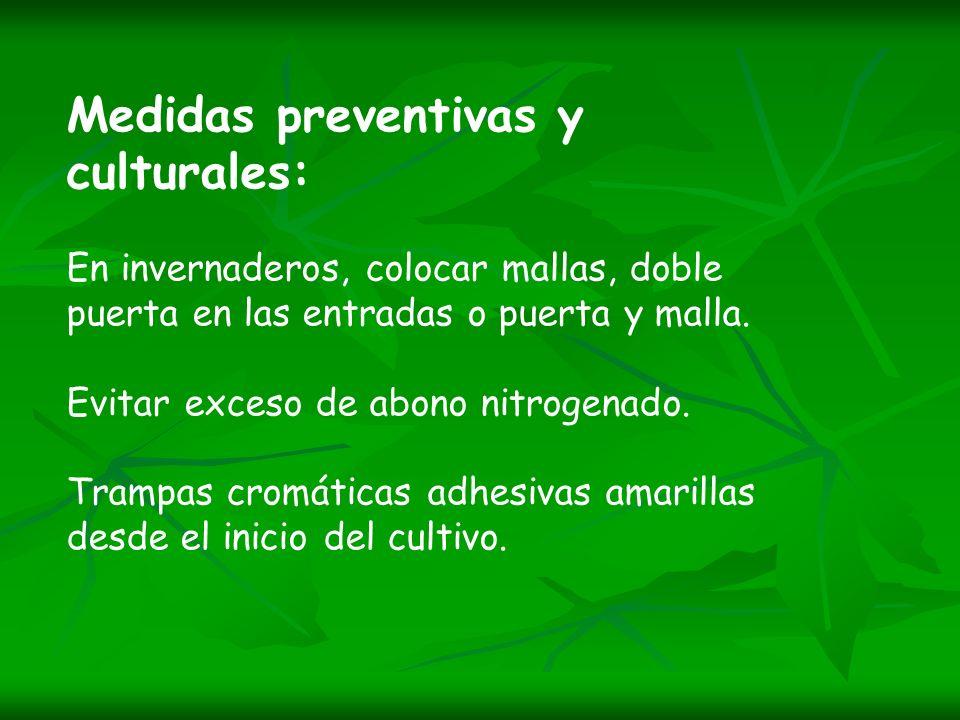 Medidas preventivas y culturales: En invernaderos, colocar mallas, doble puerta en las entradas o puerta y malla.