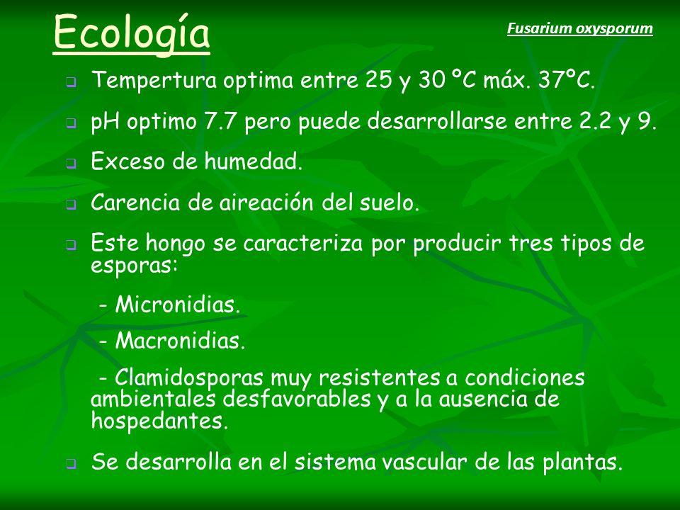 Ecología Tempertura optima entre 25 y 30 ºC máx. 37ºC.