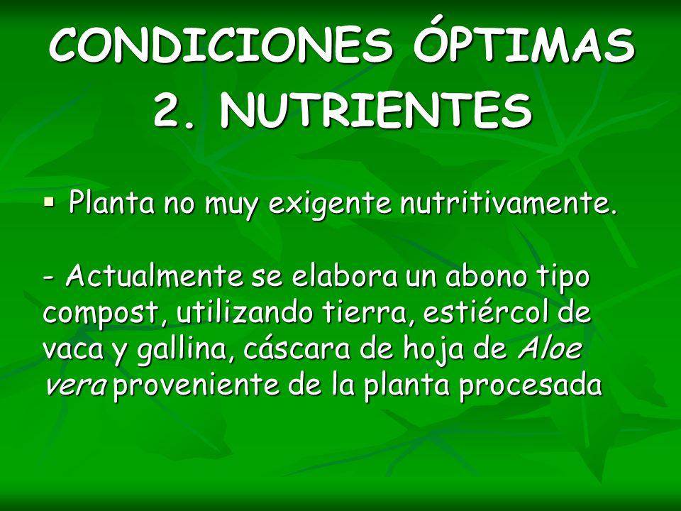 CONDICIONES ÓPTIMAS 2. NUTRIENTES