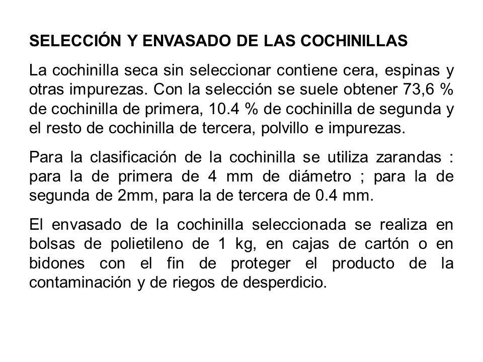SELECCIÓN Y ENVASADO DE LAS COCHINILLAS