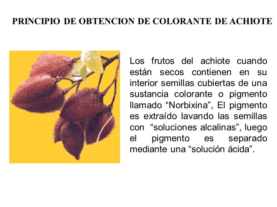 PRINCIPIO DE OBTENCION DE COLORANTE DE ACHIOTE