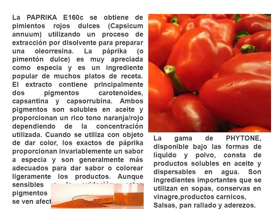 La PAPRIKA E160c se obtiene de pimientos rojos dulces (Capsicum annuum) utilizando un proceso de extracción por disolvente para preparar una oleorresina. La páprika (o pimentón dulce) es muy apreciada como especia y es un ingrediente popular de muchos platos de receta. El extracto contiene principalmente dos pigmentos carotenoides, capsantina y capsorrubina. Ambos pigmentos son solubles en aceite y proporcionan un rico tono naranja/rojo dependiendo de la concentración utilizada. Cuando se utiliza con objeto de dar color, los exactos de páprika proporcionan invariablemente un sabor a especia y son generalmente más adecuados para dar sabor o colorear ligeramente los productos. Aunque sensibles a la oxidación, estos pigmentos son estables al calor y no se ven afectados por cambios de pH.,