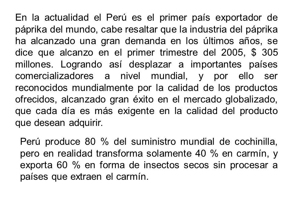 En la actualidad el Perú es el primer país exportador de páprika del mundo, cabe resaltar que la industria del páprika ha alcanzado una gran demanda en los últimos años, se dice que alcanzo en el primer trimestre del 2005, $ 305 millones. Logrando así desplazar a importantes países comercializadores a nivel mundial, y por ello ser reconocidos mundialmente por la calidad de los productos ofrecidos, alcanzado gran éxito en el mercado globalizado, que cada día es más exigente en la calidad del producto que desean adquirir.