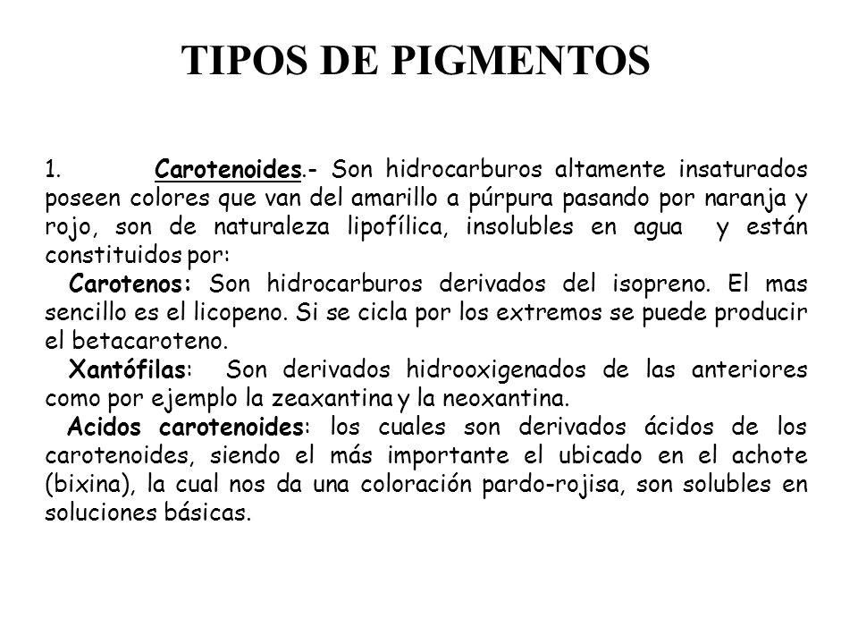 TIPOS DE PIGMENTOS