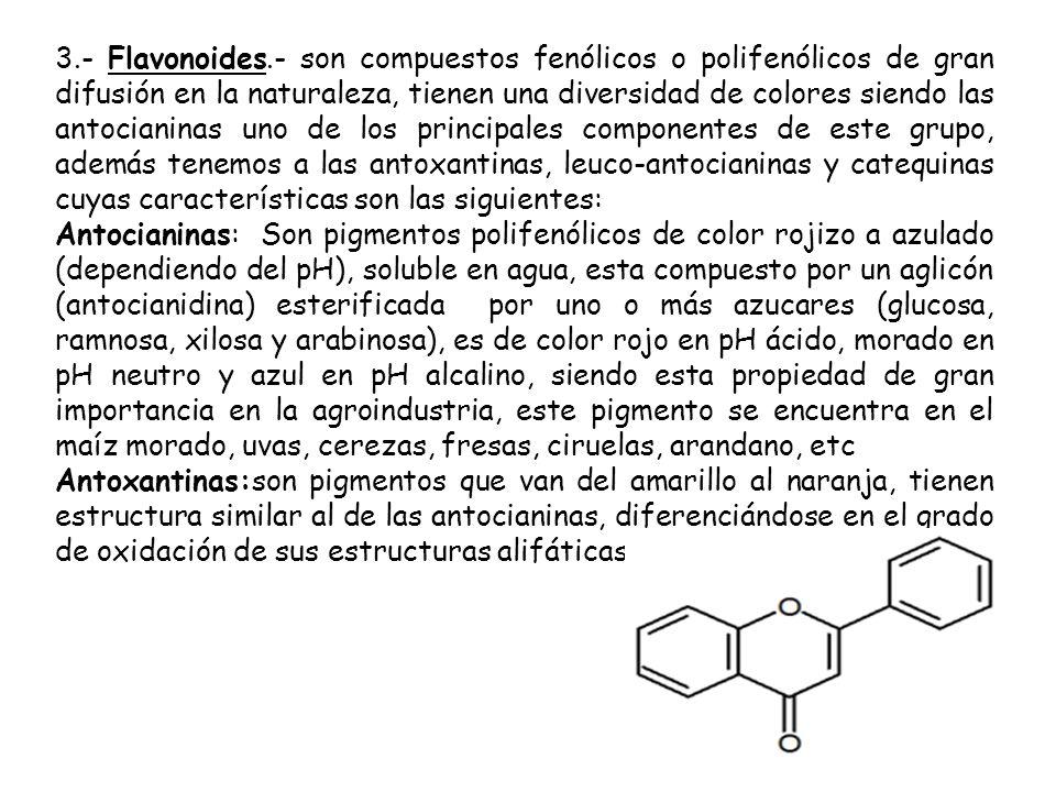 3.- Flavonoides.- son compuestos fenólicos o polifenólicos de gran difusión en la naturaleza, tienen una diversidad de colores siendo las antocianinas uno de los principales componentes de este grupo, además tenemos a las antoxantinas, leuco-antocianinas y catequinas cuyas características son las siguientes: