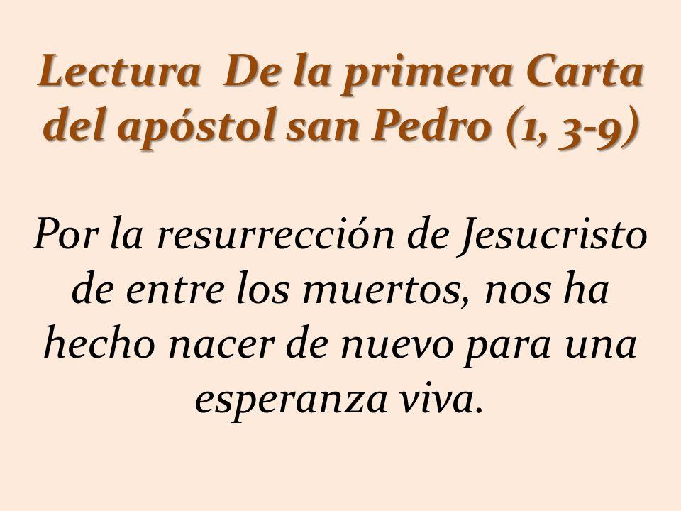 Lectura De la primera Carta del apóstol san Pedro (1, 3-9)
