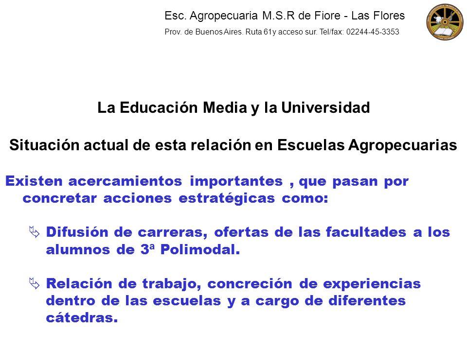 La Educación Media y la Universidad