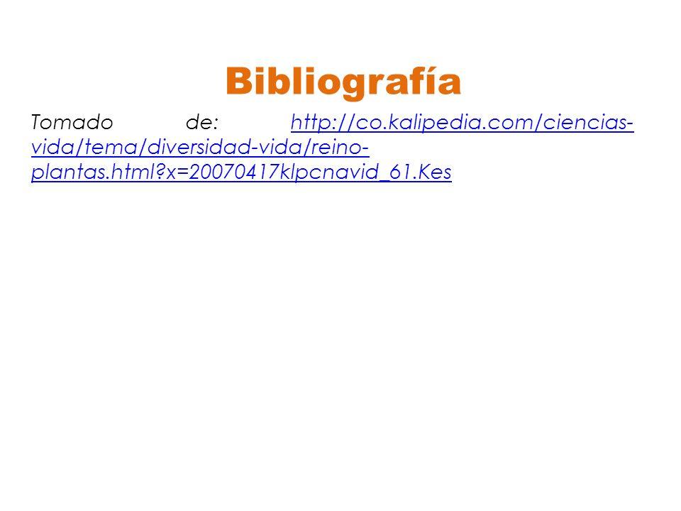 Bibliografía Tomado de: http://co.kalipedia.com/ciencias-vida/tema/diversidad-vida/reino-plantas.html x=20070417klpcnavid_61.Kes.