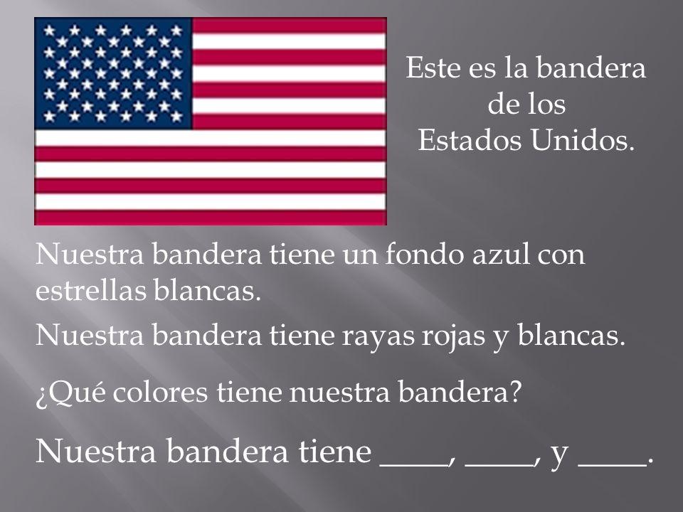 Este es la bandera de los
