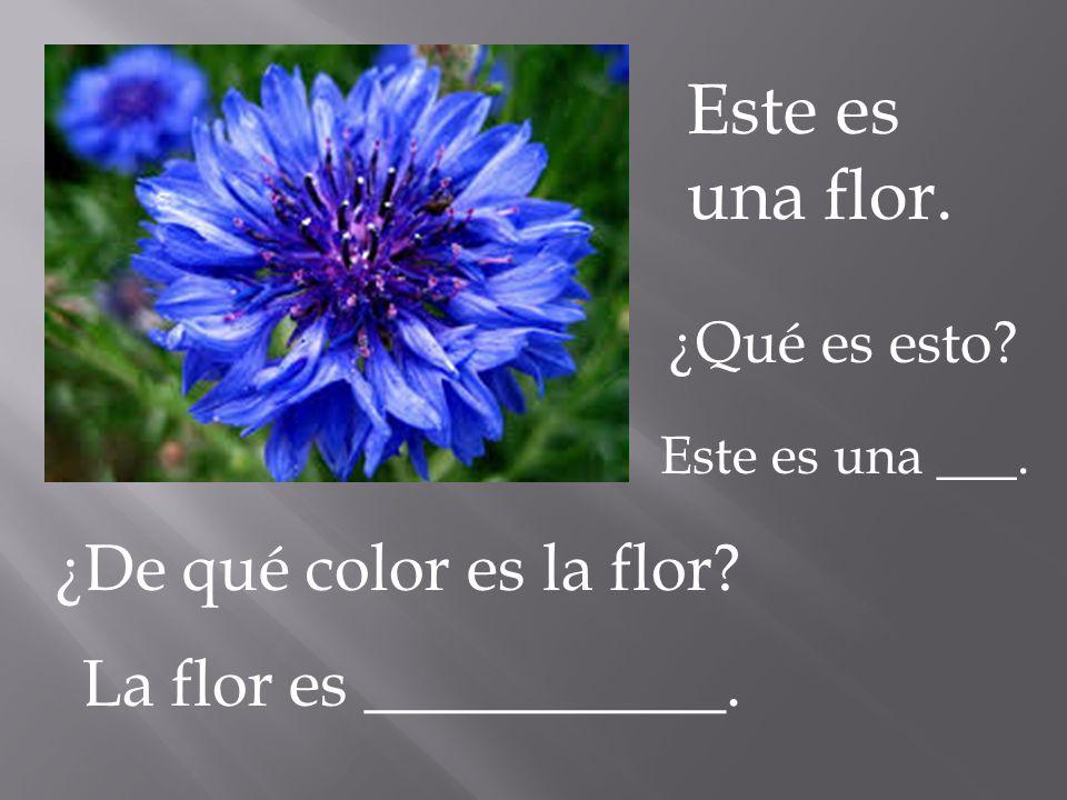 Este es una flor. ¿De qué color es la flor La flor es ___________.