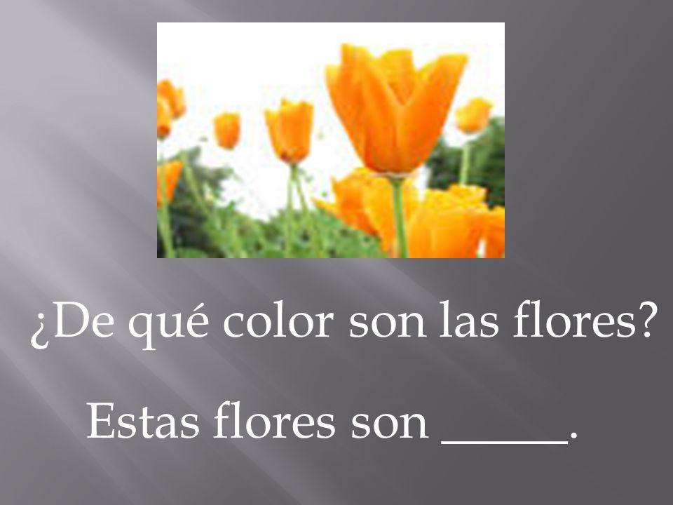 ¿De qué color son las flores