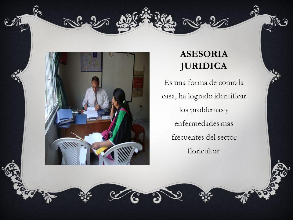 ASESORIA JURIDICA Es una forma de como la casa, ha logrado identificar los problemas y enfermedades mas frecuentes del sector floricultor.