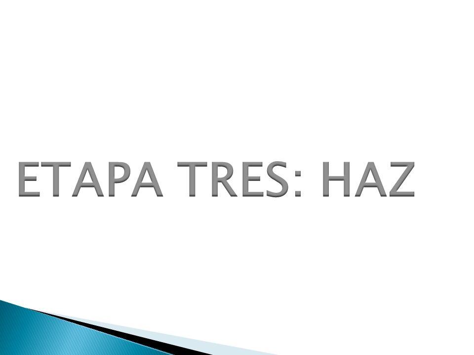 ETAPA TRES: HAZ