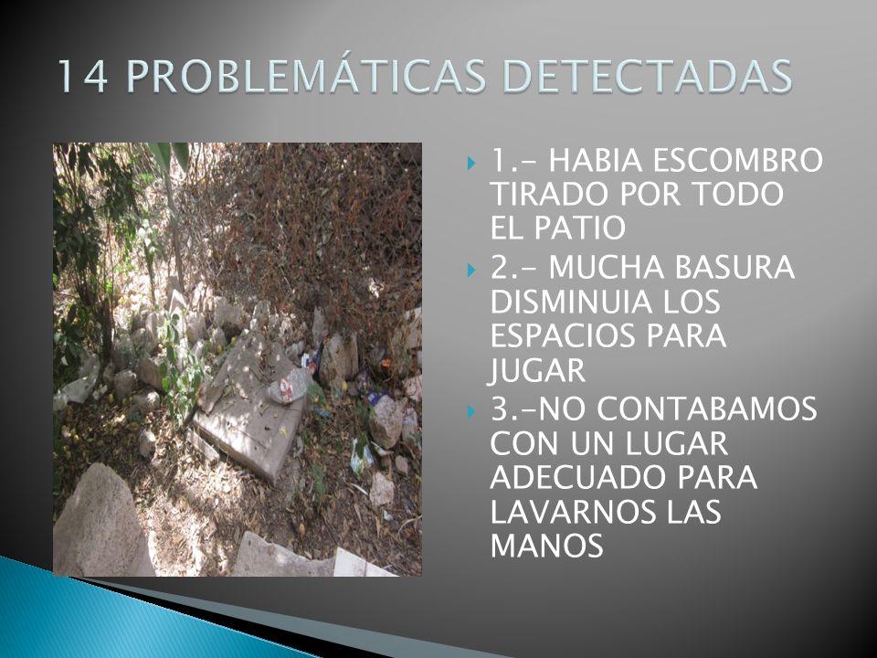 14 PROBLEMÁTICAS DETECTADAS