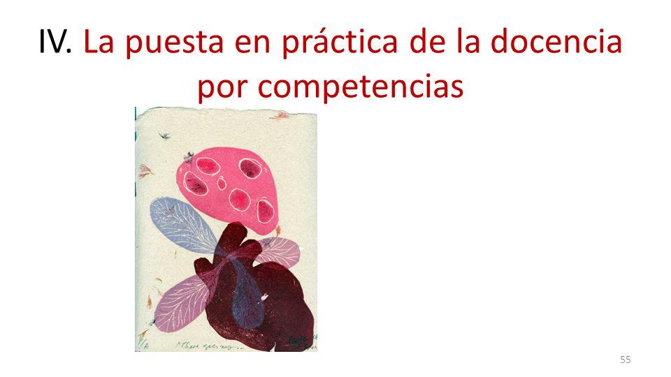 IV. La puesta en práctica de la docencia por competencias