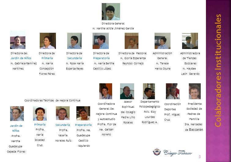 Colaboradores Institucionales