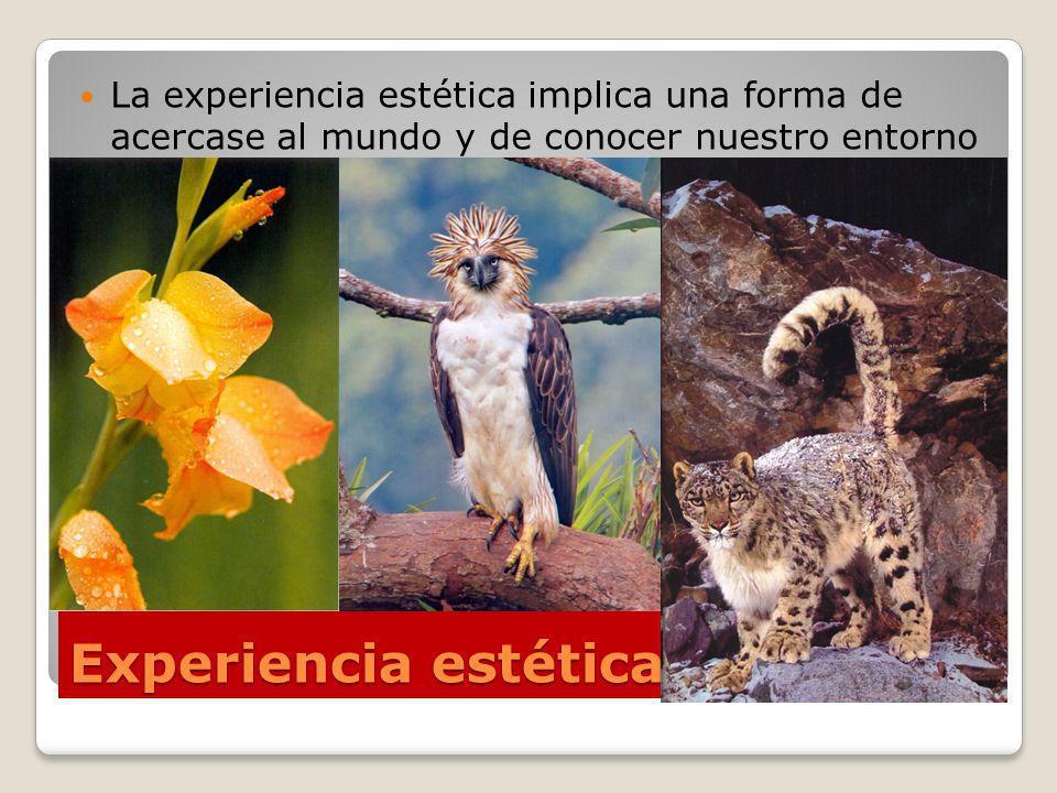La experiencia estética implica una forma de acercase al mundo y de conocer nuestro entorno