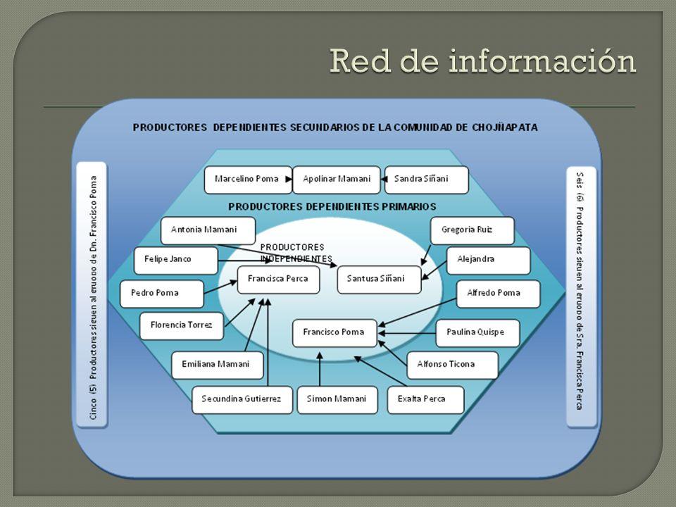 Red de información PRODUCTORES DEPENDIENTES SECUNDARIOS DE LA COMUNIDAD DE CHOJÑAPATA. PRODUCTORES DEPENDIENTES PRIMARIOS.