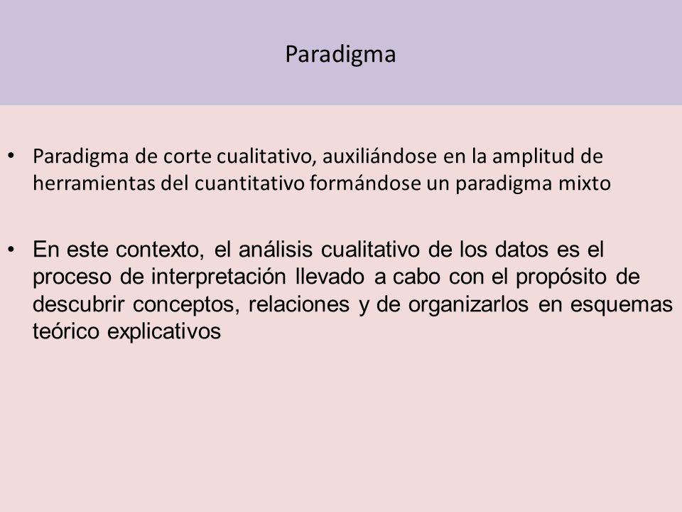 Paradigma Paradigma de corte cualitativo, auxiliándose en la amplitud de herramientas del cuantitativo formándose un paradigma mixto.