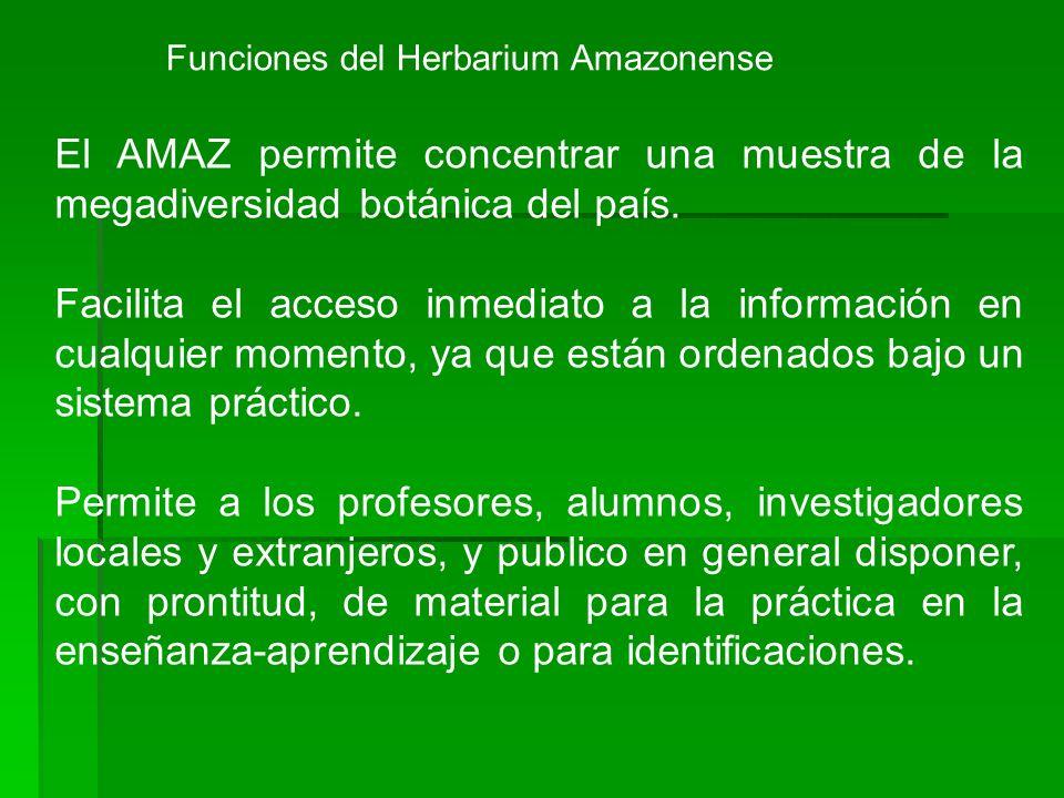 Funciones del Herbarium Amazonense